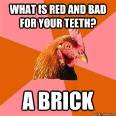 site with a bunch of anti-joke chicken memes. hi-larious! (well, I find them to be hilarious at least) Chicken Jokes, Bad Chicken, Funny Chicken, Angry Chicken, Stupid Jokes, Best Corny Jokes, T Rex, Just For Laughs, Funny Posts