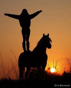 Dans l'ombre du soir, équilibriste sur le dos d'un cheval.