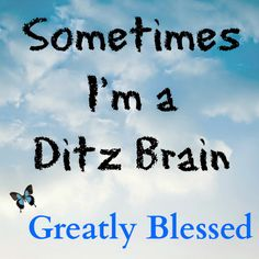 Greatly Blessed: Sometimes I'm a Ditz Brain