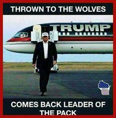 Hillary For Prison  --  America has a chance to shine again! #POTUSTrump  #Trump #DonaldJTrump #AmericaFirst #Jobs #Energy #Taxes #Immigration #Education #HealthInsurance #Yahoo #DrainTheSwamp #HillaryForPrison