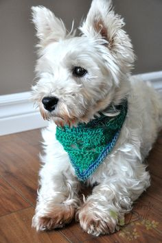Free Dog Bandana crochet pattern featuring Red Heart Yarns Unforgettable. Pattern by Sincerely Pam