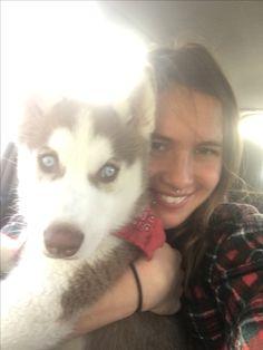 ❤️ Red Siberian Husky, Dogs, Animals, Animales, Animaux, Pet Dogs, Doggies, Animal, Animais