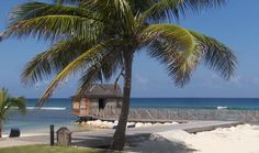 I think I could live right here!  Half Moon - Montego Bay