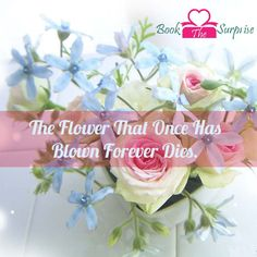 The #flower that one has blown forever dies.#gift #love #party#bookthesurprise #nature #garden