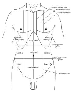 Epigastrium-- (or epigastric region) is the upper central region of the abdomen. It is located between the costal margins & the subcostal plane. The epigastrium is one of the nine regions of the abdomen, along with the right & left hypochondria, right & left lateral regions (lumbar areas or flanks), right & left inguinal regions (or fossae), & the umbilical and pubic regions.