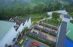 UAE Business: Fragrant Nature offers 'Kerala Golden Trio' for GCC visitors
