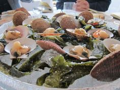 Fresh Scallops on the half shell at Dill in Reykjavik