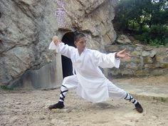 Tai Chi master-learn Tai Chi in China