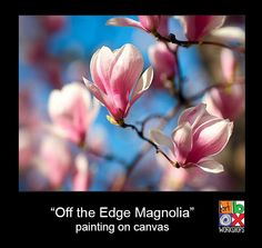 "Tuesday 29th September, for kids 8 - 12 years old ""Off the edge Magnolia"" on canvas with Julia. Our older group absolutely love these ""off the edge"" paintings and what better topic than one of the first spring flowers, the magnolia. Lots of skills but always great results."