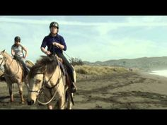 Riding Horses on the Beach - How To Introduce Your Horse to the Beach