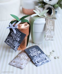 MichaelsMakers Lia Griffith shares this great DIY wedding idea - Wedding Seeds favors