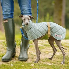New Sage Quilted Showerproof Whippet Coat