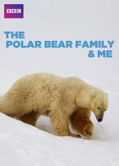 The Polar Bear Family and Me (2013) - From spring to autumn in Svalbard, Norway, the always-adventurous Gordon Buchanan follows a family of polar bears through good times and bad.