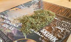Creative Cannabis Lifestyle Hacks