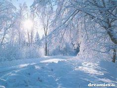 Wallpaper With Snow Winter Photography – Smile Images Winter Szenen, Winter Magic, Winter Walk, I Love Snow, Winter Wallpaper, Christmas Wallpaper, Snow Scenes, Landscape Wallpaper, Landscape Paintings