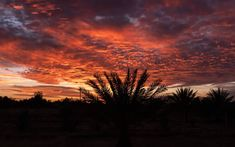 Sunsets in Morocco are on fire! Read everything about our Sahara desert experience in this blog post! Click the picture