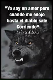 Resultado de imagen para Lobo solitario