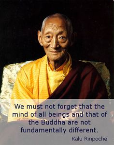 """Fundamentally not different ~ Kalu Rinpoche http://justdharma.com/s/m576p  We must not forget that the mind of all beings and that of the Buddha are not fundamentally different.  – Kalu Rinpoche  from the book """"Luminous Mind: The Way of the Buddha"""" ISBN: 978-0861711185  -  https://www.amazon.com/gp/product/0861711181/ref=as_li_tf_tl?ie=UTF8&camp=1789&creative=9325&creativeASIN=0861711181&linkCode=as2&tag=jusdhaquo-20"""