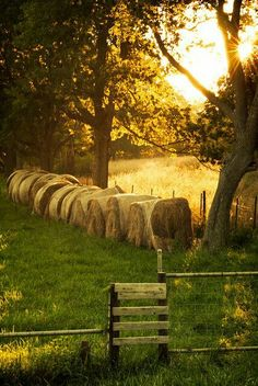 Country Living ~ bales of hay