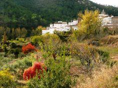Aín, en la Sierra de Espadán, Castellón.