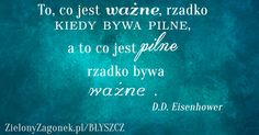 http://zielonyzagonek.pl/projekt-blyszcz-brzasku/