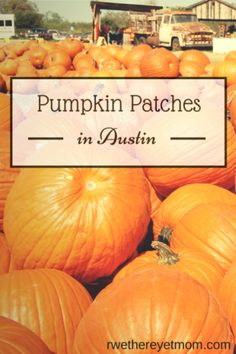 PumpkinPatches