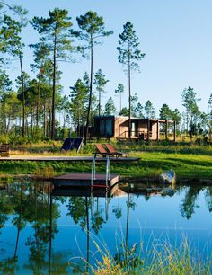 Cocoon Lodges