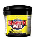 Interactive Mammoth 2500 delicious enzyme–activated formula is the most calorie dense weight gain product on the market today. For long–term energy source that are not stored as body fat. Today Interactive Nutrition Mammoth 2500 is the Best Testing and most Calorie Filled Weight Gainer on the Market.
