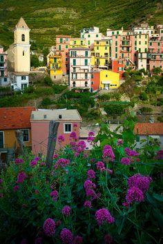 ✯ Town of Manarola in Italy's Cinque Terre National Park, province of La Spezia , Liguria region Italy