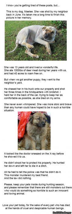 Such a Sad Story!