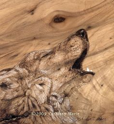 Pyrography Wolf by leidolf