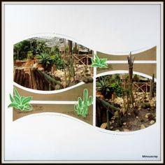 Encore une tite page sur les cactus et plantes grasses ! Gabarit Azza Bilbao-Macao