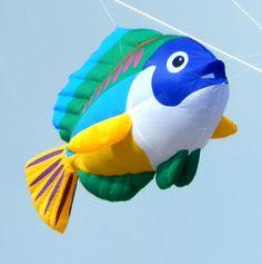 Giant Fish Kite | The Guitar kite below sells for $2,200 .