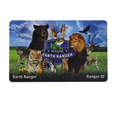 Customized Printing Code Passive RFID Card as one of our popular products, can be provided free sample and valuable guidance. Radio Band, Radio Frequency Identification, Save Animals, Black Mamba, Online Marketing, Ranger, Coding, Earth, Kids