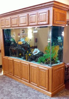 Create a unique #aquarium with Dura Supreme #cabinetry customized for your living space.