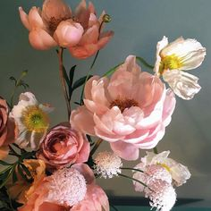 Flowers bouquet floral arrangements peonies New ideas Flowers Nature, Wild Flowers, Happy Flowers, Amazing Flowers, Beautiful Flowers, Sogetsu Ikebana, Bloom, Flower Aesthetic, Planting Flowers