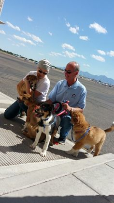 4 Mores dogs saved from Korea . thank you to Pilots & Paws for the volunteer work !