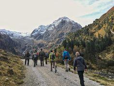 Ein Spaziergang durch spektakuläre Berglandschaften - und eine Lektion über die heimische Tierwelt 🦌😍 Innsbruck, Hiking, Mountains, Nature, Travel, Mountain Landscape, Woods, Animals, Walks