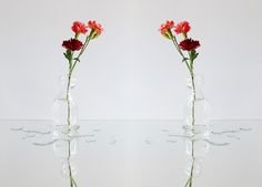 little owow vase - clear glass