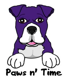GET THE BEST PET INSURANCE  www.getpetinsurancequote.com