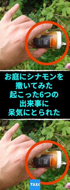 お庭にシナモンを撒く6つの理由 お庭にシナモンを撒いたらもう殺菌剤や防虫スプレーは必要ない #ガーデニング #シナモン #シナモンスティック #シナモンパウダー #庭 #挿し木 #殺菌剤 #防カビ