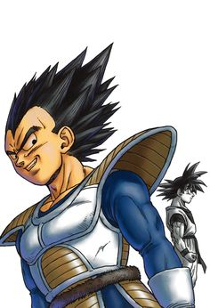 Vegeta and Goku from Dragon Ball Z manga and anime