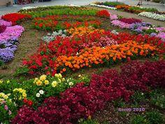 El Jardín Botánico Atlántico de Gijón -