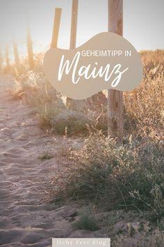 Geheimtipp in Mainz - Einer meiner liebsten Orte, um Kraft in der Natur zu tanken ist der Mainzer Sand, etwas außerhalb der Innenstadt der rheinland-pfälzischen Landeshauptstadt. Außerdem findet ihr hier tolle Fotomotive und mir macht es immer wieder Freude mir die Kamera zu schnappen und die kleinen Naturwunder entlang des Weges festzuhalten.   Itchy Feet Reiseblo Outdoor Reisen, Movie Posters, Travel, Mainz, Wilderness, Viajes, Film Poster, Destinations, Traveling