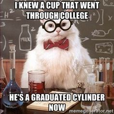 Chemistry Cat - i knew a cup that went through college he's a graduated cylinder now