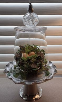 Reproposed Cloche ..made from 4 thrift store items. Go to website for other ideas of seasonal themes inside the display!