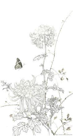 Japanese Painting, Chinese Painting, Chinese Art, Japanese Art, Botanical Drawings, Botanical Art, Botanical Illustration, Silk Painting, Painting & Drawing