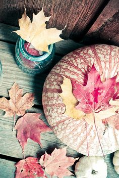 Fall = pumpkins + leaves