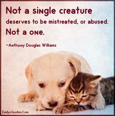 Not a single creature deserves to be mistreated, or abused. Not a one. | Popular inspirational quotes at EmilysQuotes