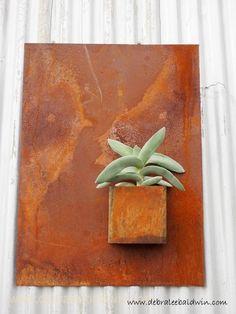 Succulent Extravagan...
